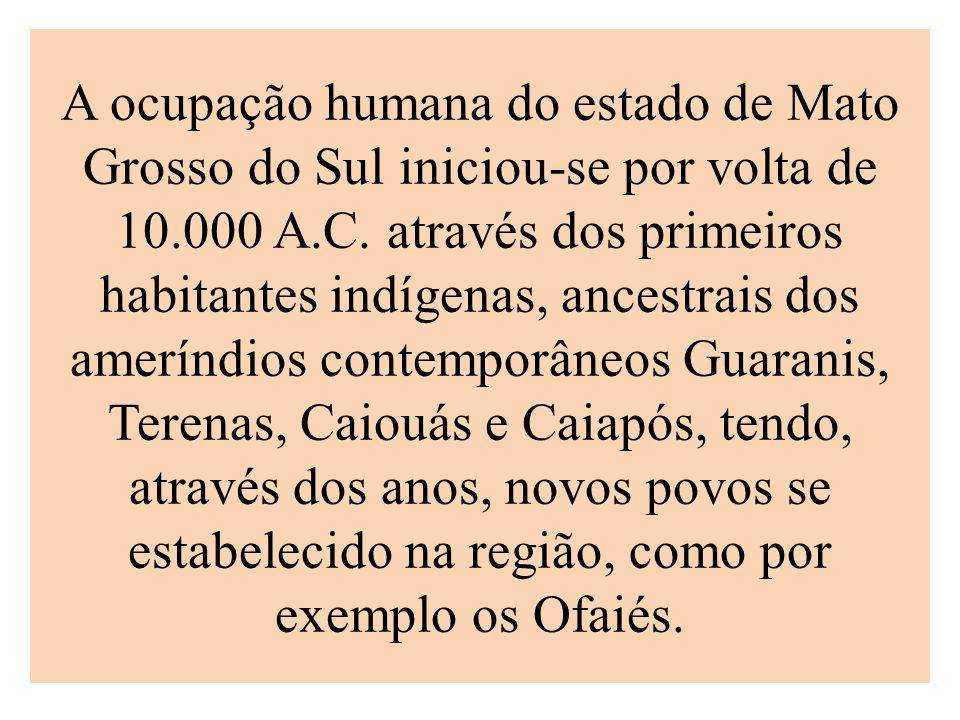 A ocupação humana do estado de Mato Grosso do Sul iniciou-se por volta de 10.000 A.C.