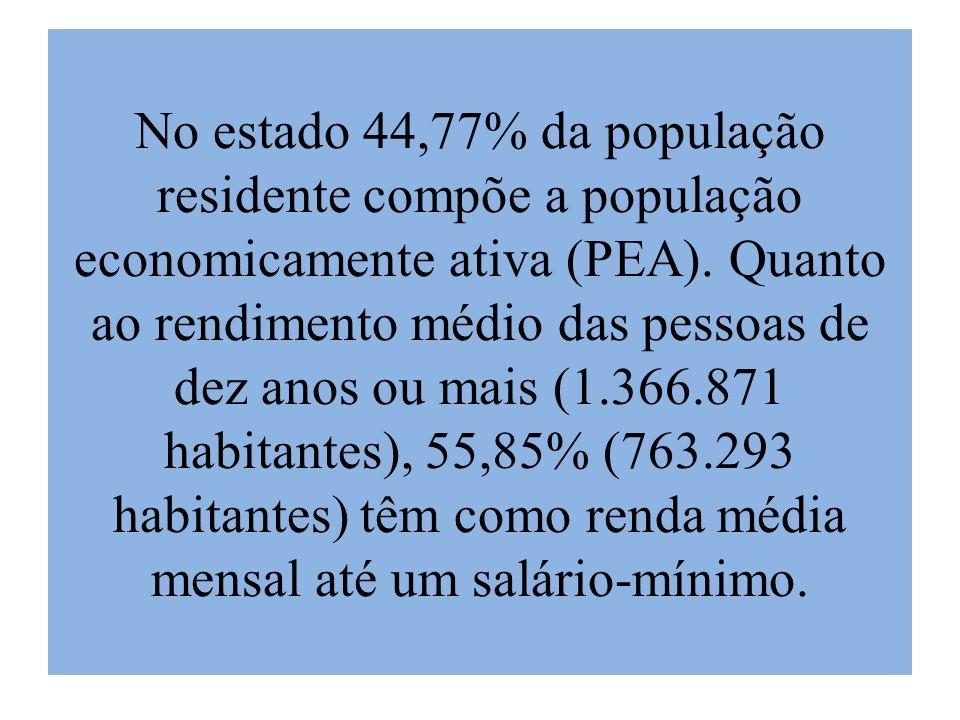 No estado 44,77% da população residente compõe a população economicamente ativa (PEA).