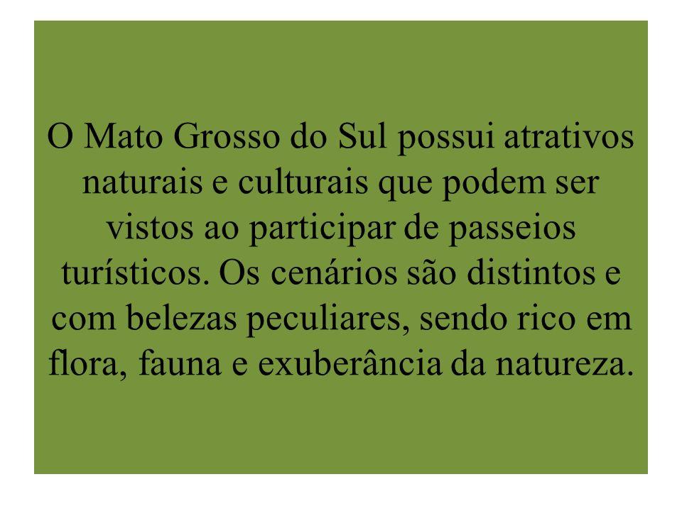 O Mato Grosso do Sul possui atrativos naturais e culturais que podem ser vistos ao participar de passeios turísticos.