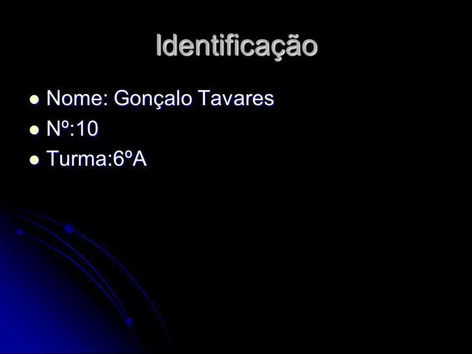 Identificação Nome: Gonçalo Tavares Nº:10 Turma:6ºA