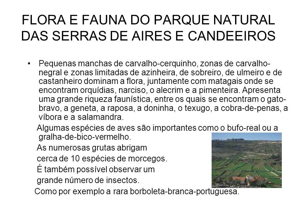 FLORA E FAUNA DO PARQUE NATURAL DAS SERRAS DE AIRES E CANDEEIROS
