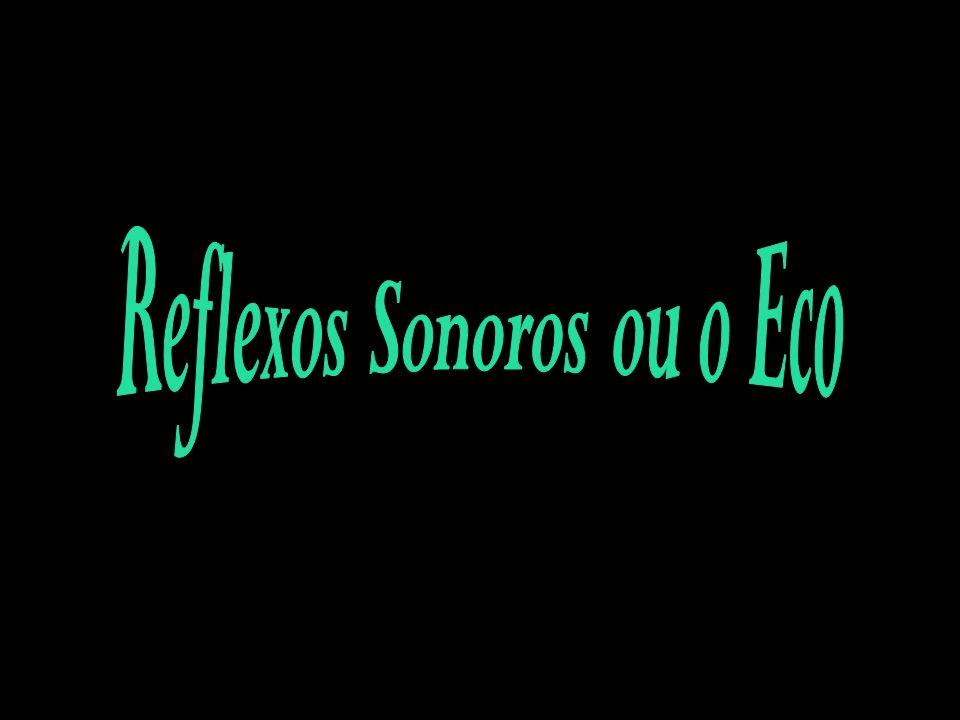 Reflexos Sonoros ou o Eco