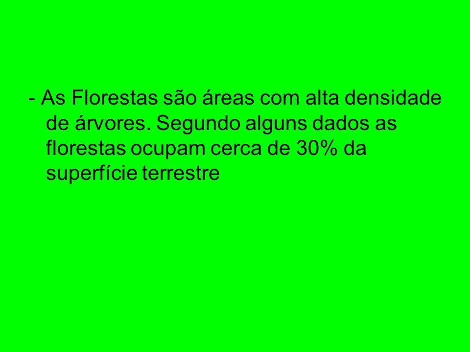 - As Florestas são áreas com alta densidade de árvores