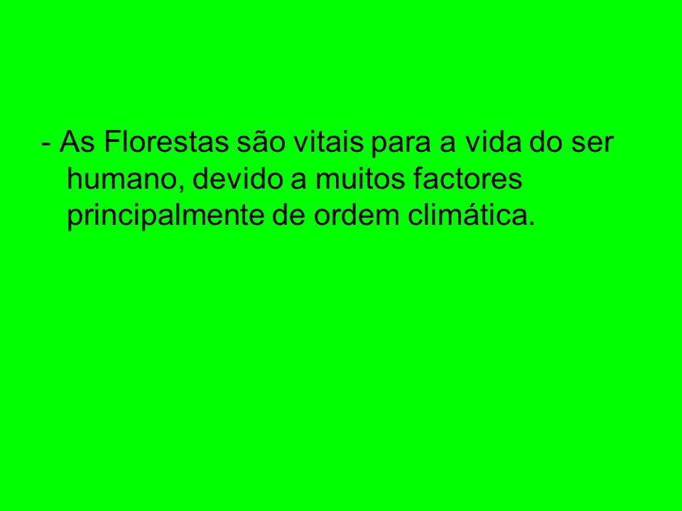- As Florestas são vitais para a vida do ser humano, devido a muitos factores principalmente de ordem climática.