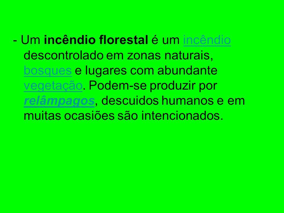 - Um incêndio florestal é um incêndio descontrolado em zonas naturais, bosques e lugares com abundante vegetação.