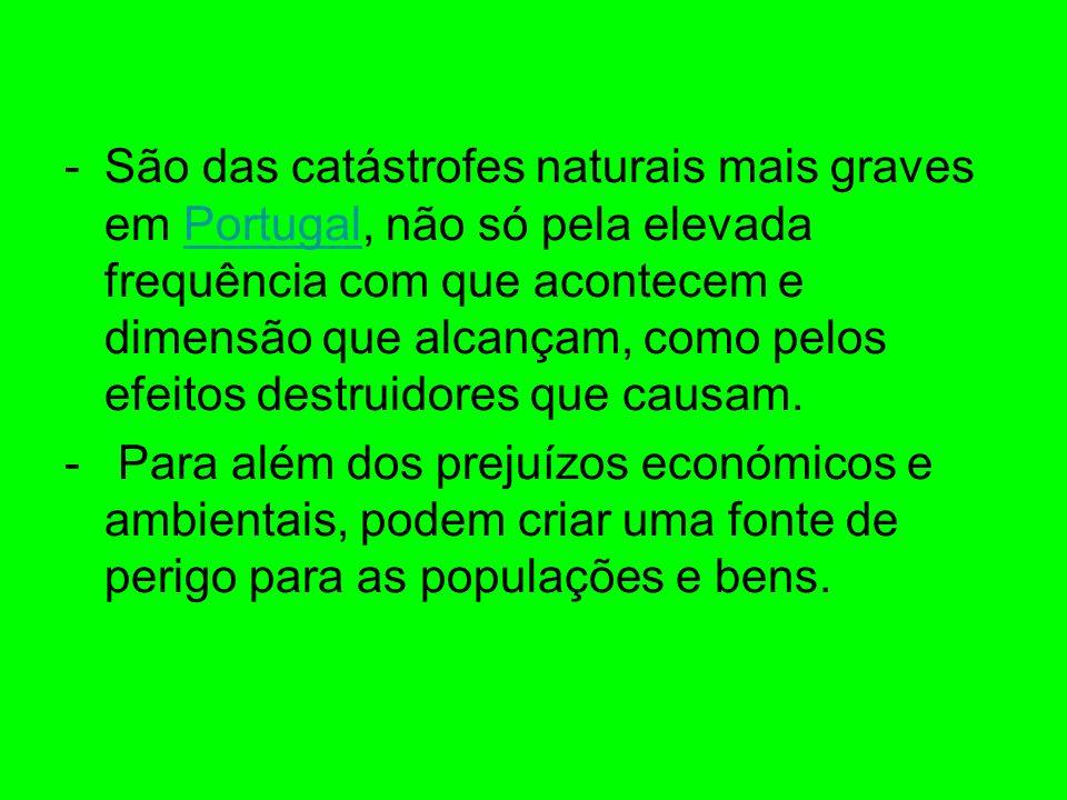 São das catástrofes naturais mais graves em Portugal, não só pela elevada frequência com que acontecem e dimensão que alcançam, como pelos efeitos destruidores que causam.