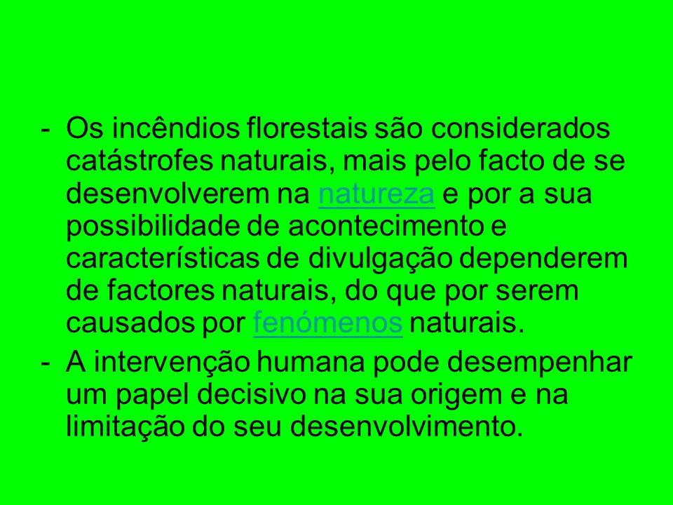 Os incêndios florestais são considerados catástrofes naturais, mais pelo facto de se desenvolverem na natureza e por a sua possibilidade de acontecimento e características de divulgação dependerem de factores naturais, do que por serem causados por fenómenos naturais.