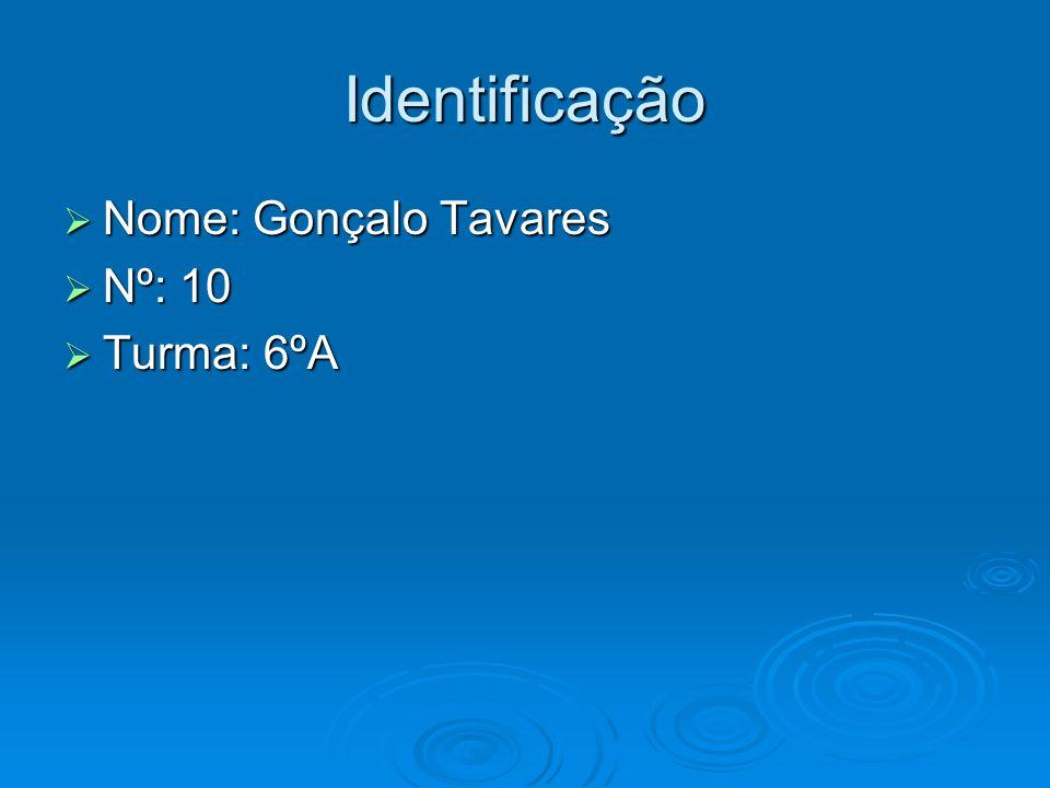 Identificação Nome: Gonçalo Tavares Nº: 10 Turma: 6ºA