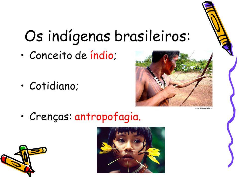 Os indígenas brasileiros: