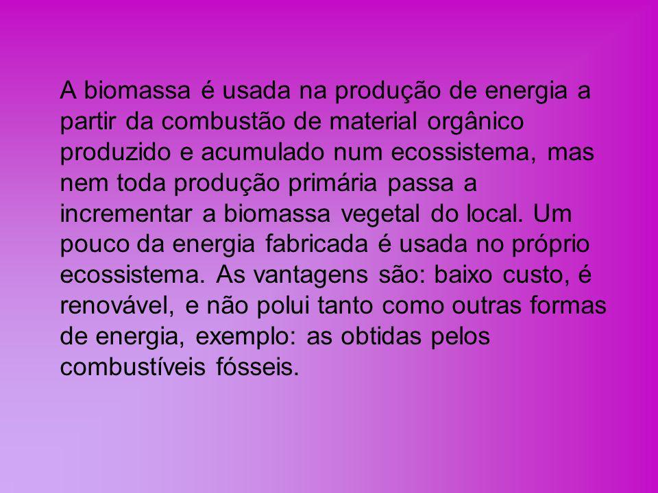 A biomassa é usada na produção de energia a partir da combustão de material orgânico produzido e acumulado num ecossistema, mas nem toda produção primária passa a incrementar a biomassa vegetal do local.