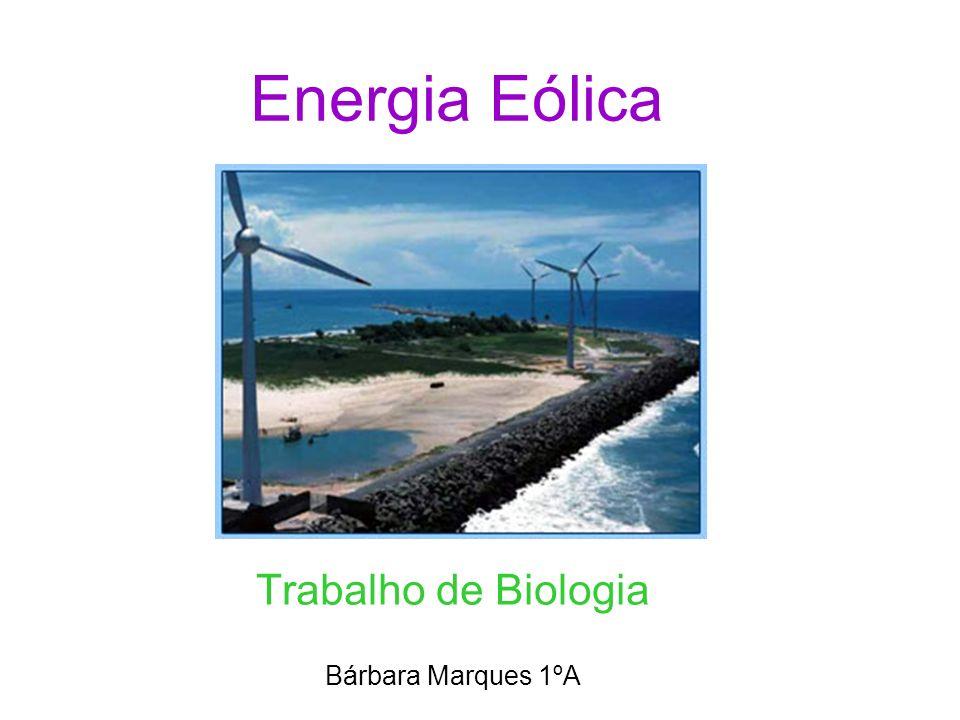 Trabalho de Biologia Bárbara Marques 1ºA