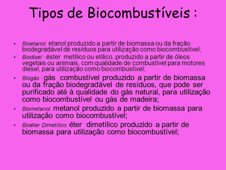 Tipos de Biocombustíveis :