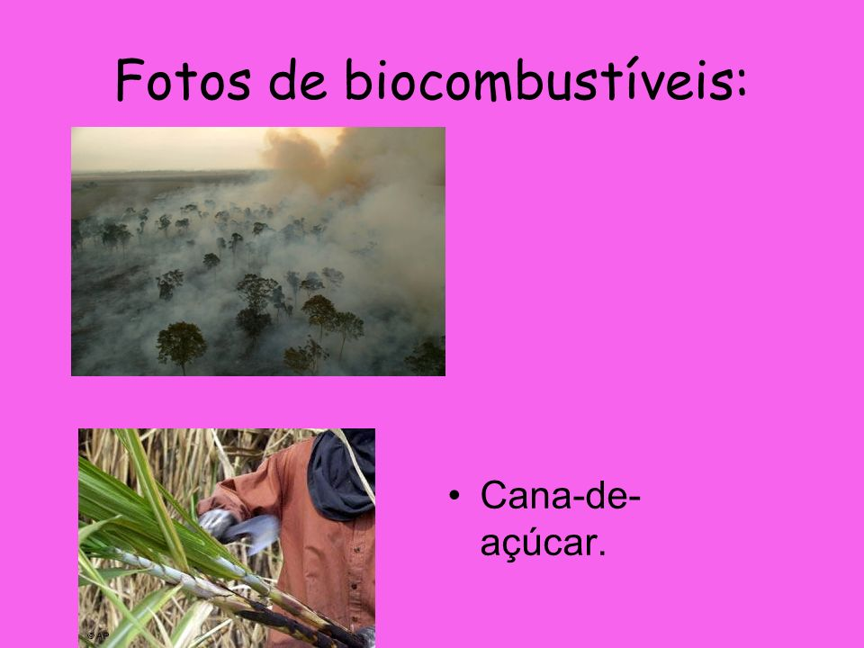 Fotos de biocombustíveis: