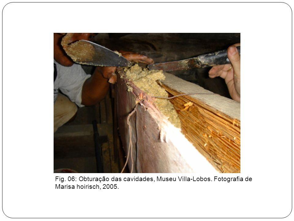 Fig. 06: Obturação das cavidades, Museu Villa-Lobos