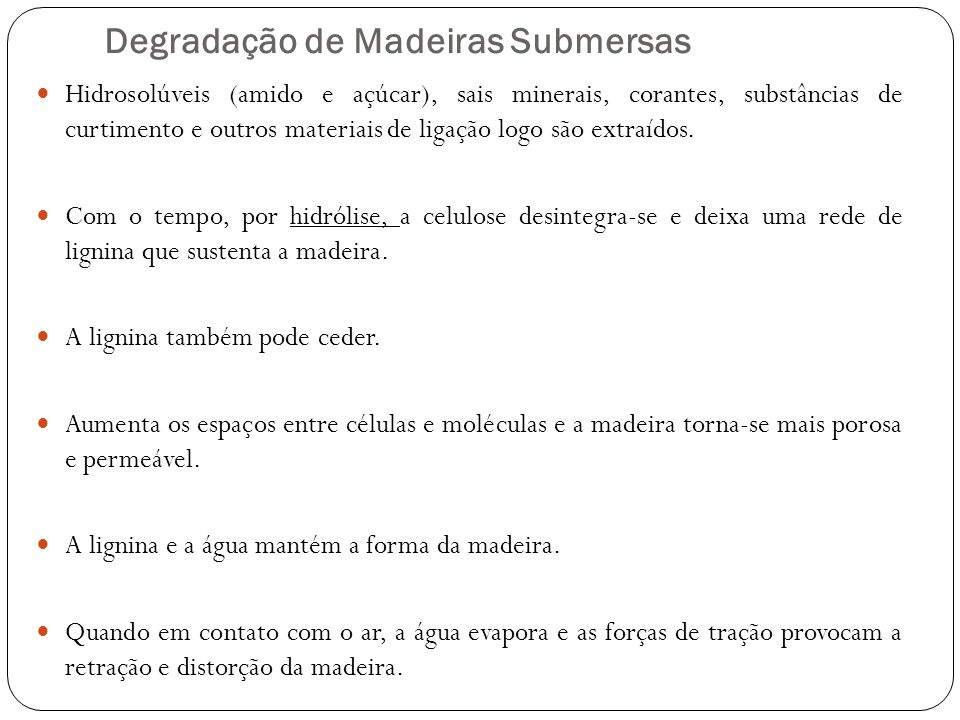 Degradação de Madeiras Submersas