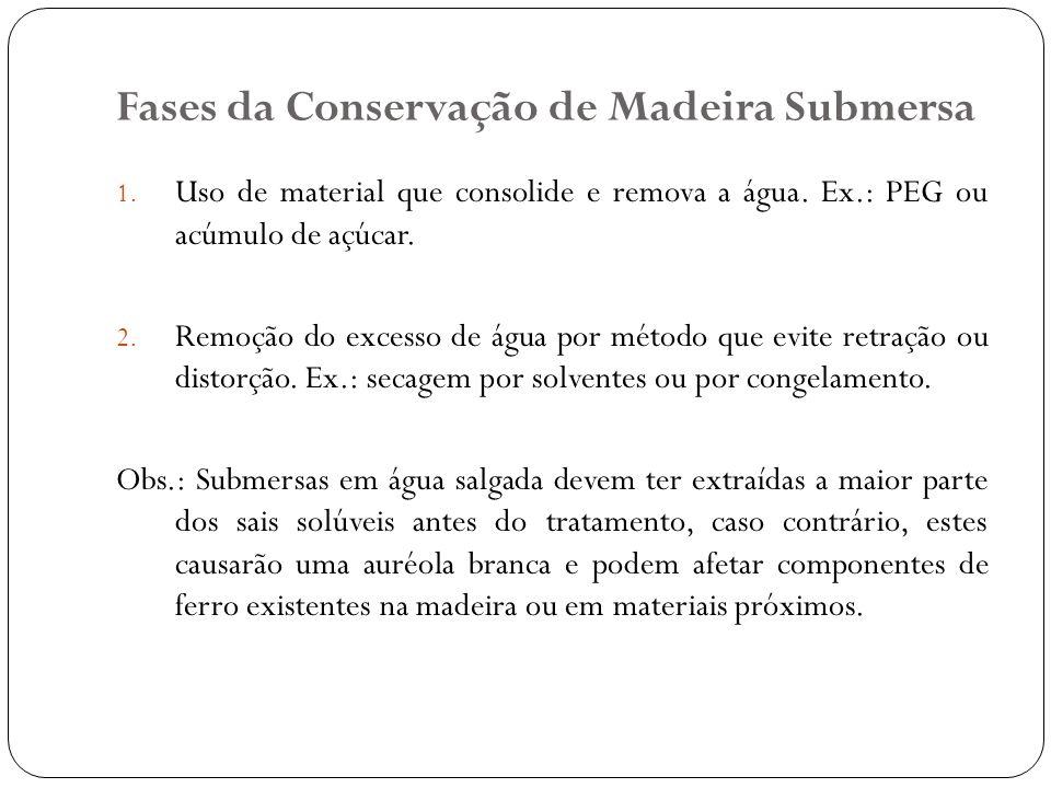 Fases da Conservação de Madeira Submersa