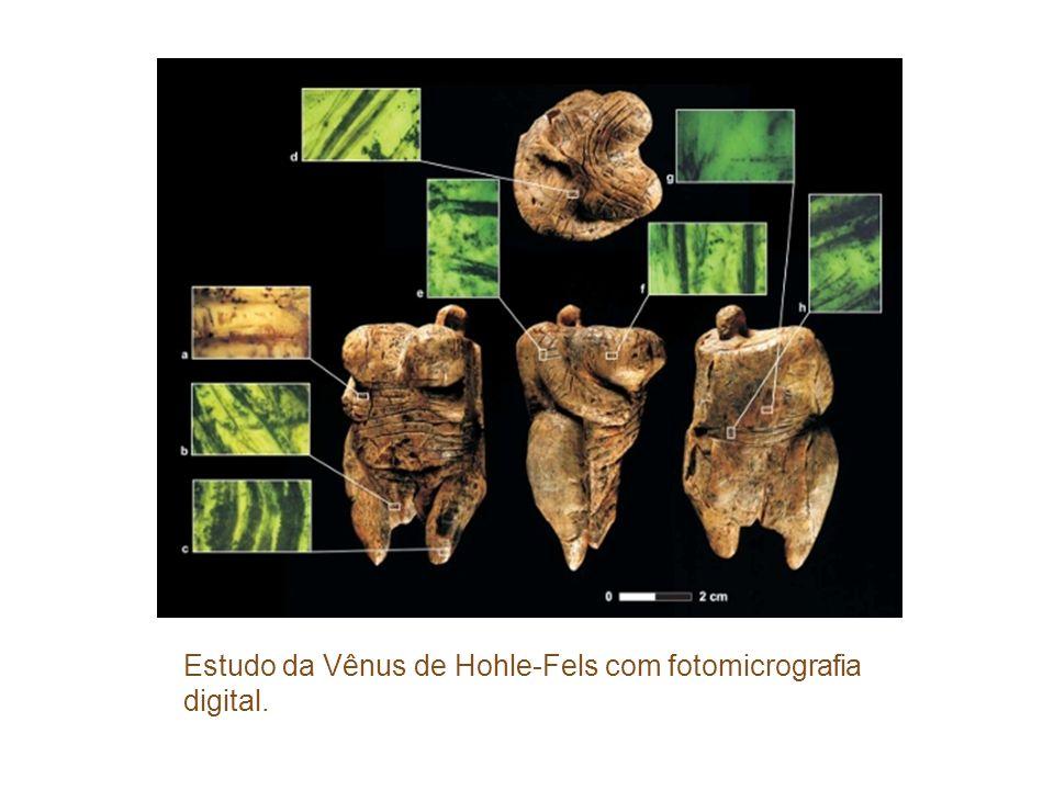 Estudo da Vênus de Hohle-Fels com fotomicrografia digital.