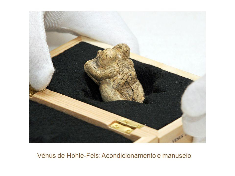 Vênus de Hohle-Fels: Acondicionamento e manuseio