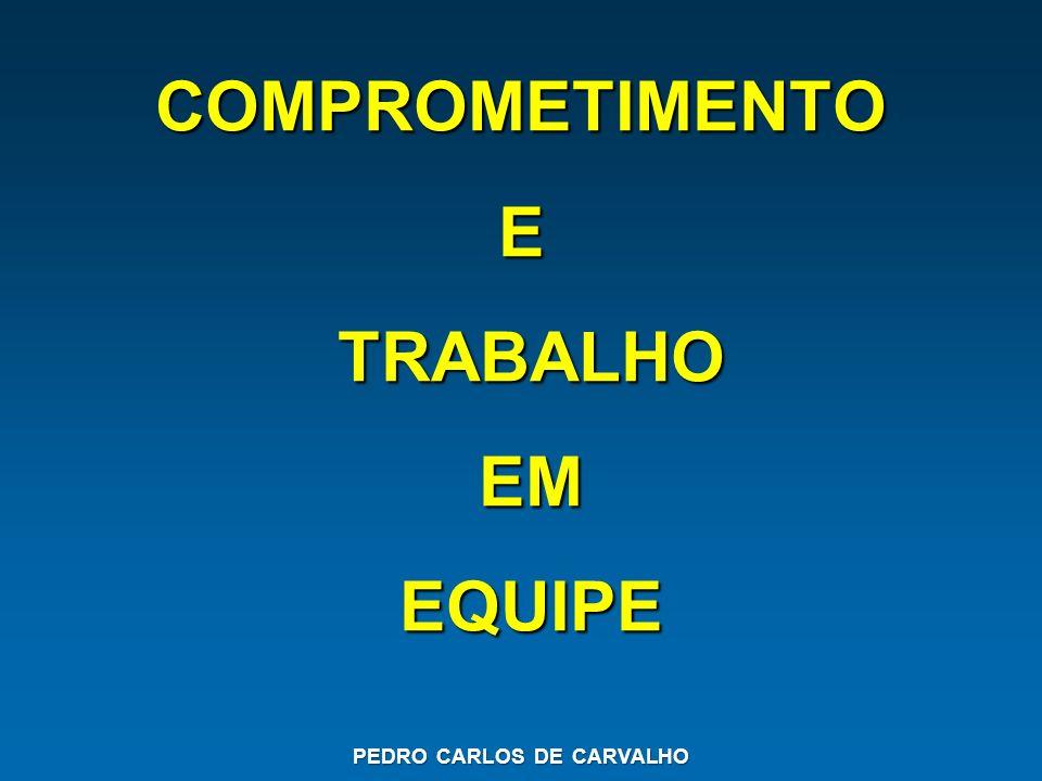 COMPROMETIMENTO E TRABALHO EM EQUIPE