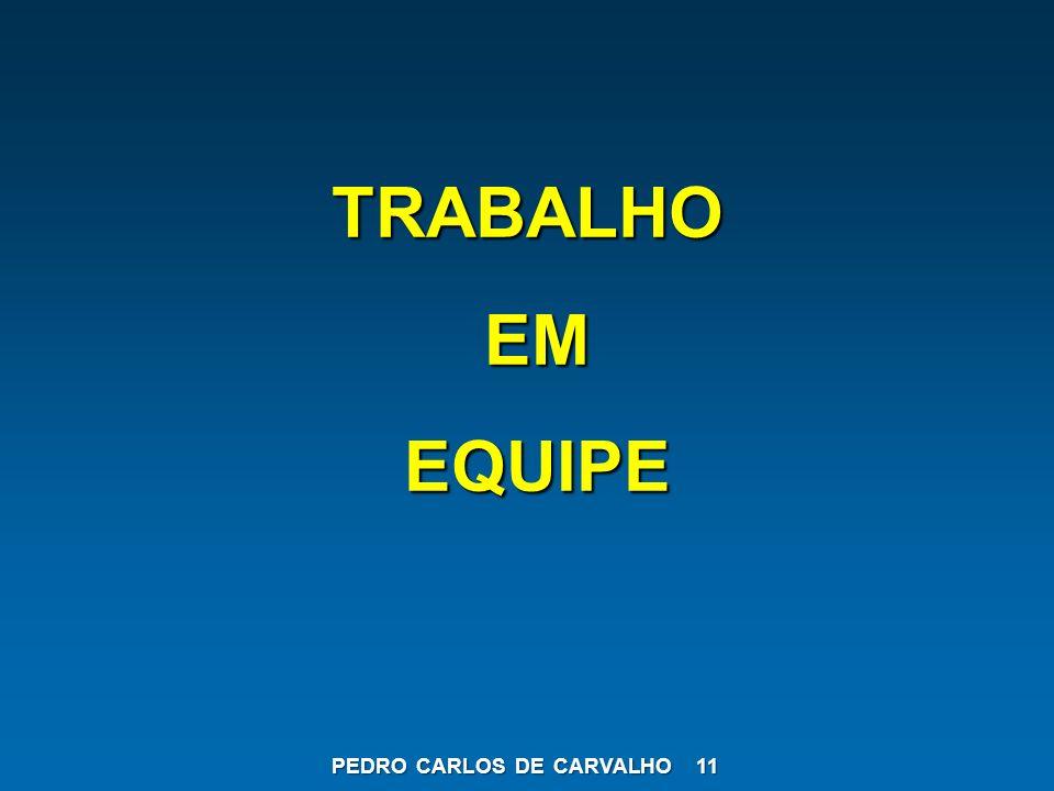 TRABALHO EM EQUIPE PEDRO CARLOS DE CARVALHO 11