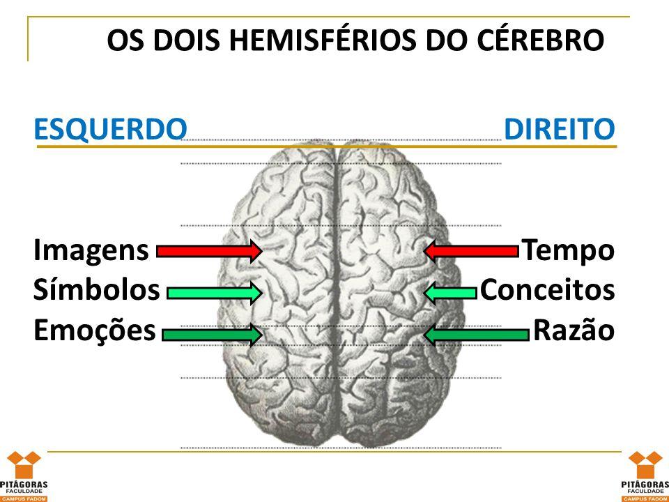 OS DOIS HEMISFÉRIOS DO CÉREBRO