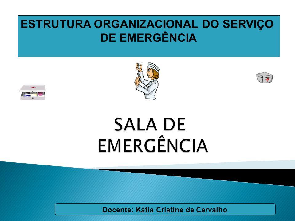 SALA DE EMERGÊNCIA ESTRUTURA ORGANIZACIONAL DO SERVIÇO DE EMERGÊNCIA