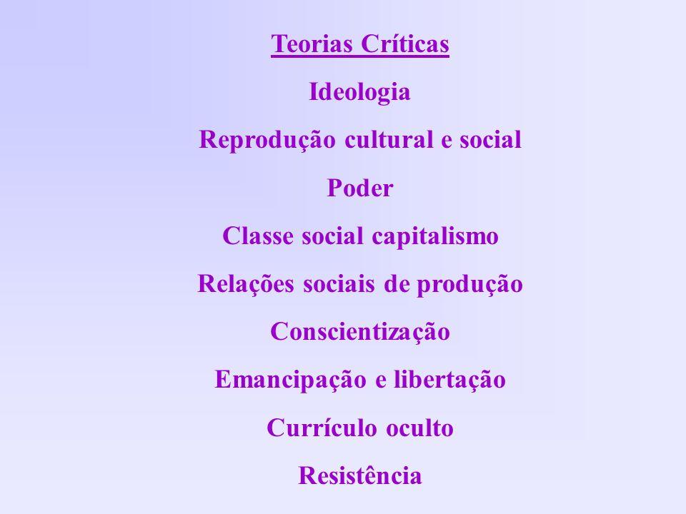 Reprodução cultural e social Poder Classe social capitalismo