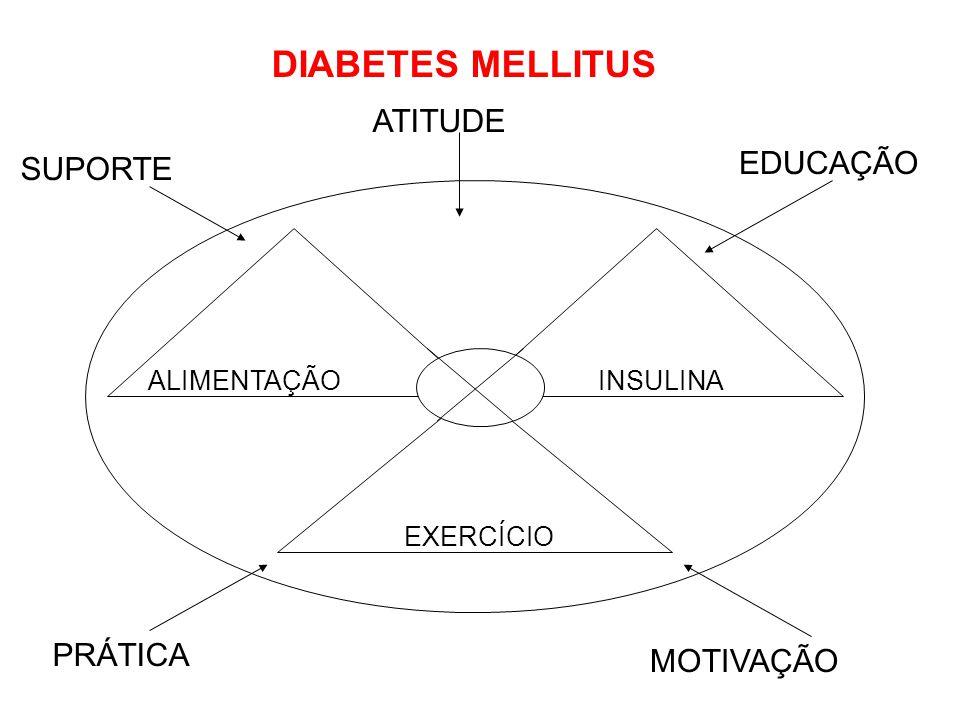DIABETES MELLITUS ATITUDE EDUCAÇÃO SUPORTE PRÁTICA MOTIVAÇÃO