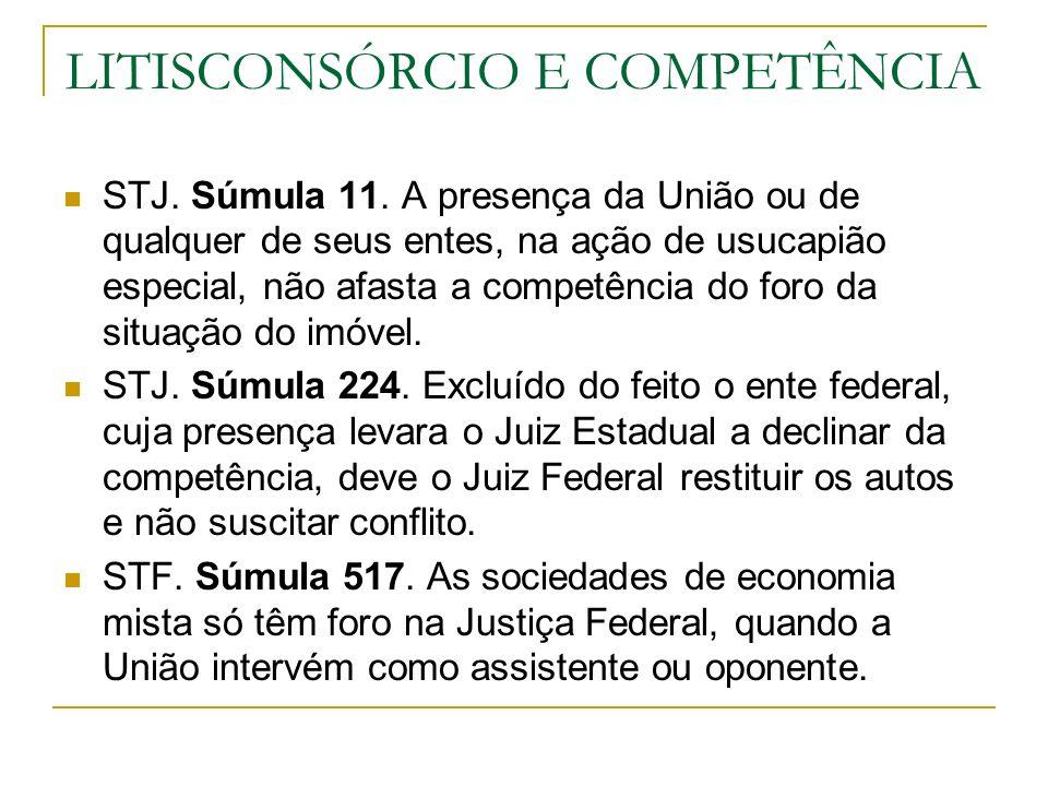 LITISCONSÓRCIO E COMPETÊNCIA