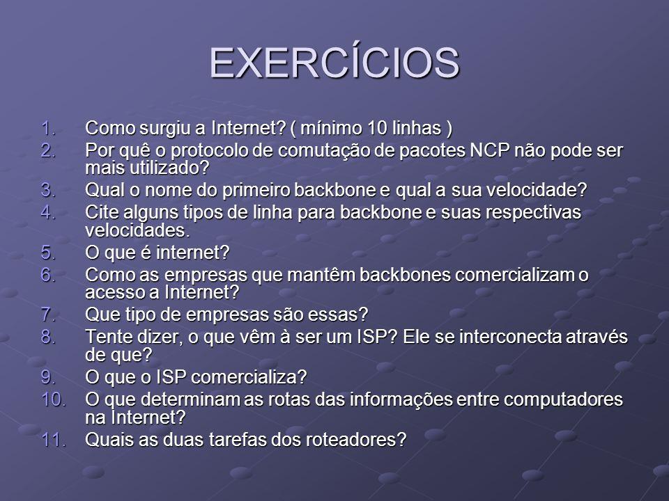 EXERCÍCIOS Como surgiu a Internet ( mínimo 10 linhas )