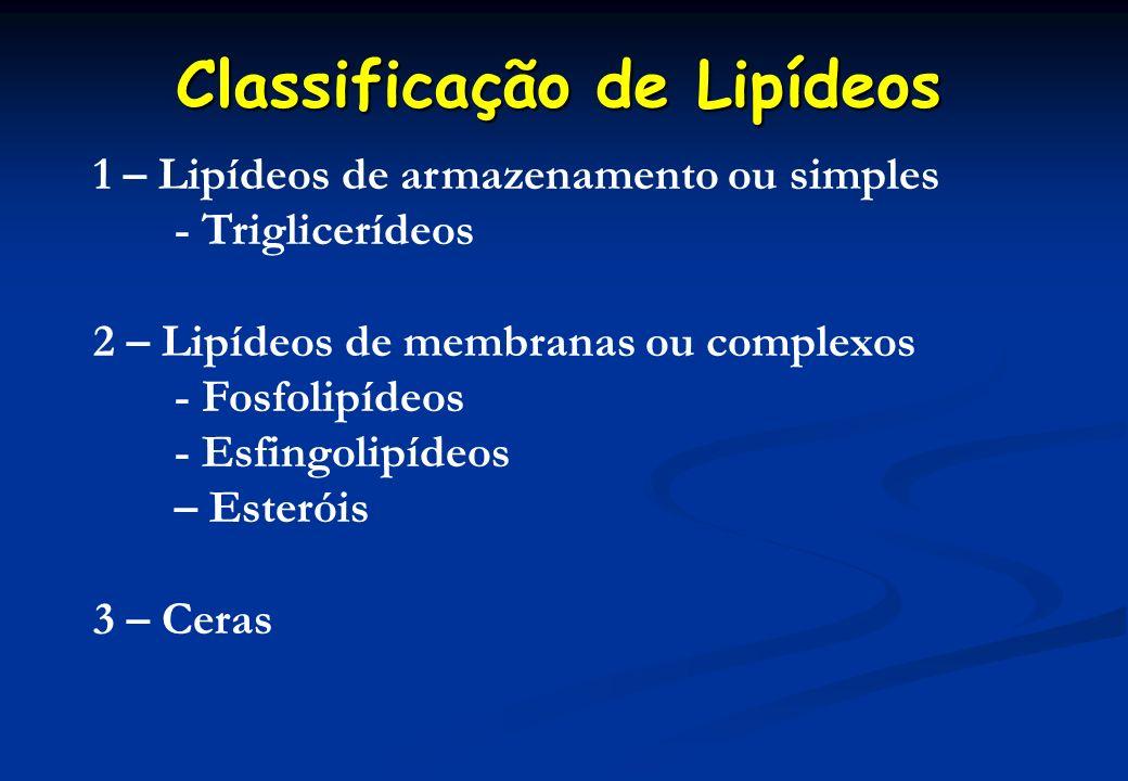 Classificação de Lipídeos