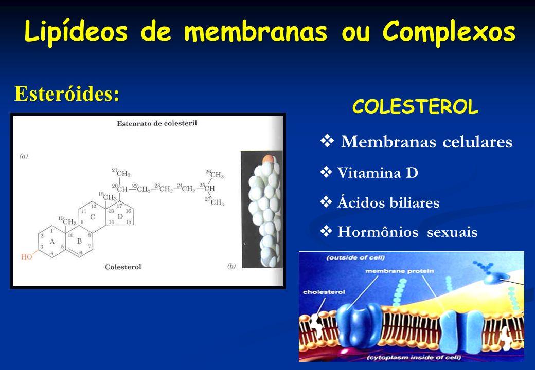 Lipídeos de membranas ou Complexos