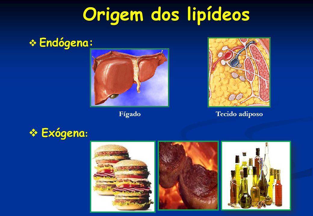 Origem dos lipídeos  Endógena:  Exógena: Fígado Tecido adiposo