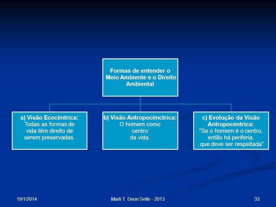 Meio Ambiente e o Direito Ambiental b) Visão Antropocênctrica: