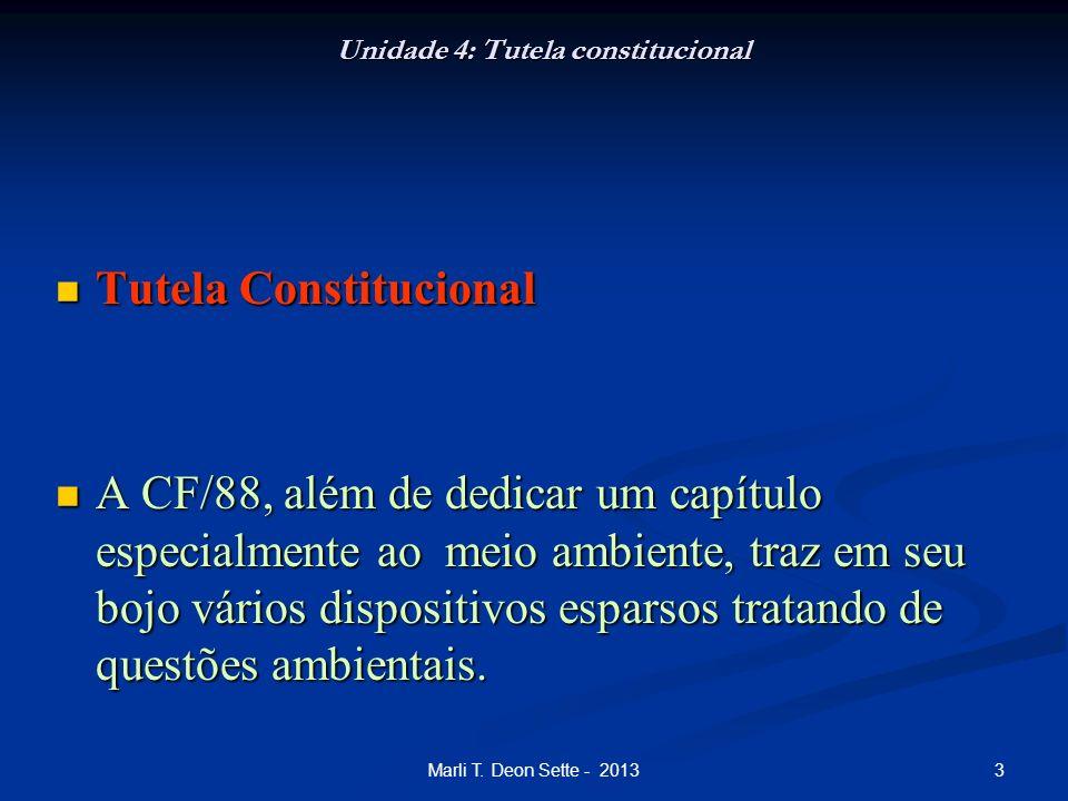 Unidade 4: Tutela constitucional