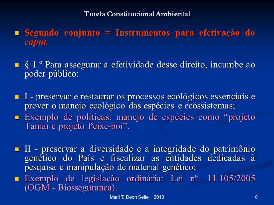 Tutela Constitucional Ambiental