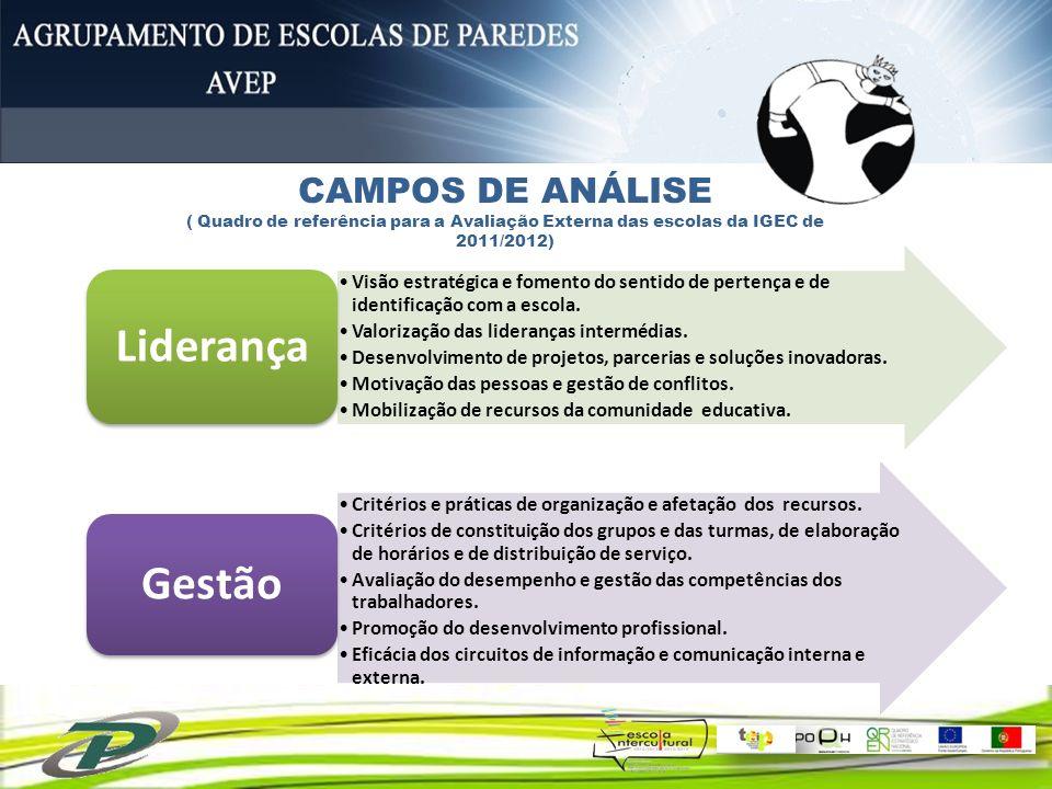 CAMPOS DE ANÁLISE( Quadro de referência para a Avaliação Externa das escolas da IGEC de 2011/2012) Liderança.