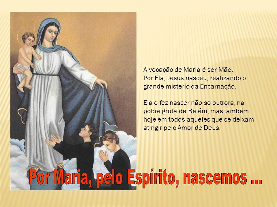 Por Maria, pelo Espírito, nascemos ...