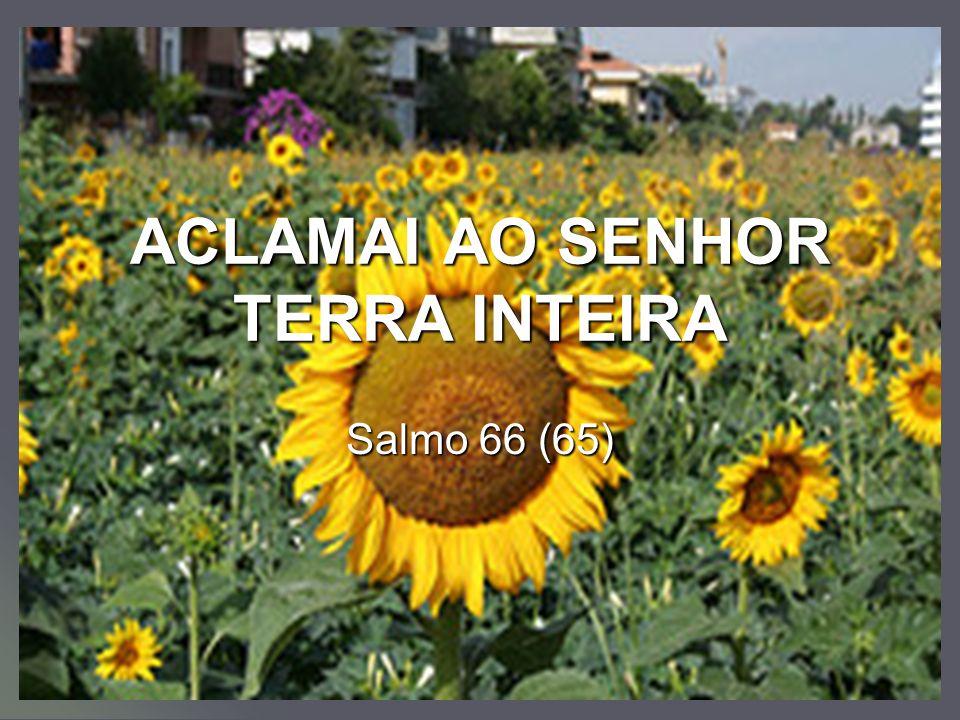 ACLAMAI AO SENHOR TERRA INTEIRA