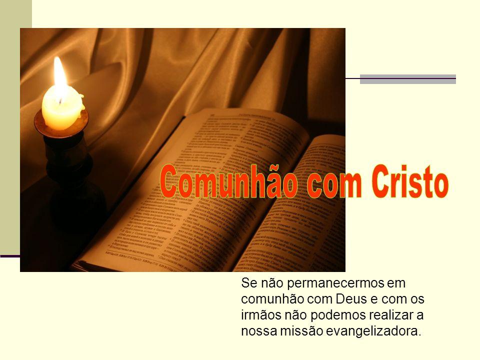 Comunhão com Cristo Se não permanecermos em comunhão com Deus e com os irmãos não podemos realizar a nossa missão evangelizadora.