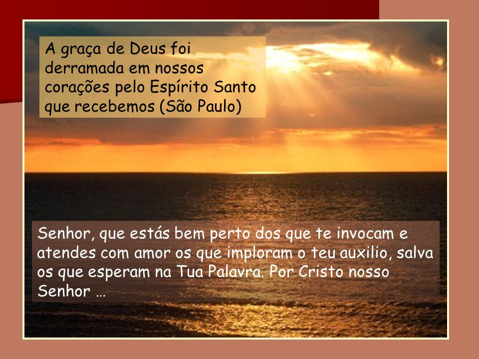 A graça de Deus foi derramada em nossos corações pelo Espírito Santo que recebemos (São Paulo)