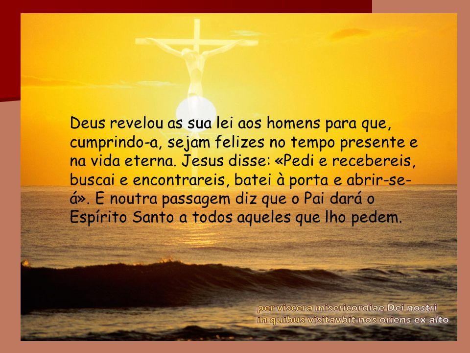 Deus revelou as sua lei aos homens para que, cumprindo-a, sejam felizes no tempo presente e na vida eterna.
