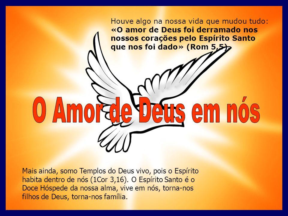 Houve algo na nossa vida que mudou tudo: «O amor de Deus foi derramado nos nossos corações pelo Espírito Santo que nos foi dado» (Rom 5,5).