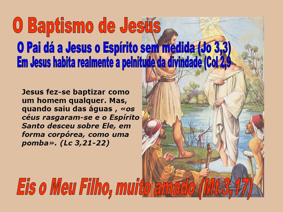 O Baptismo de Jesus Eis o Meu Filho, muito amado (Mt 3,17)
