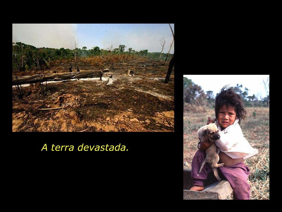 A terra devastada.