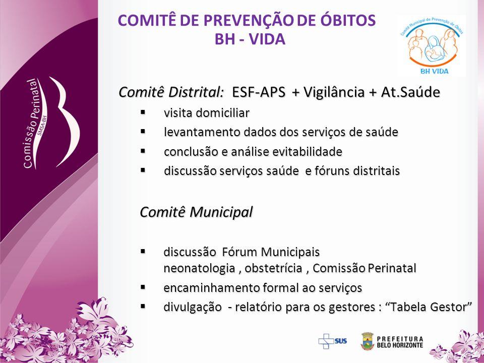 COMITÊ DE PREVENÇÃO DE ÓBITOS BH - VIDA