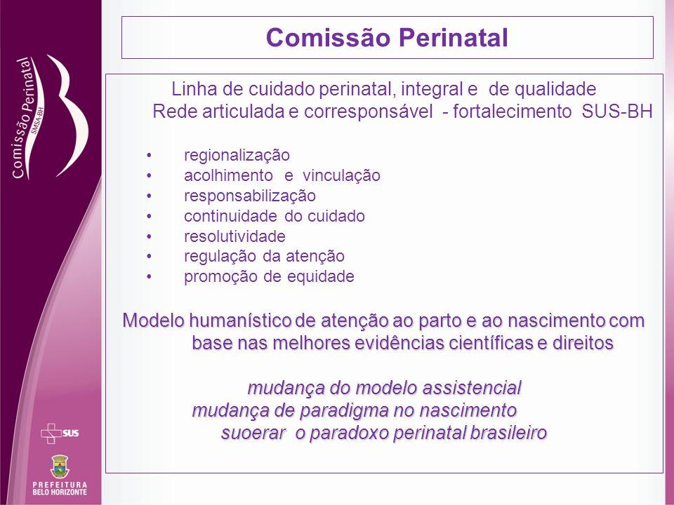 suoerar o paradoxo perinatal brasileiro