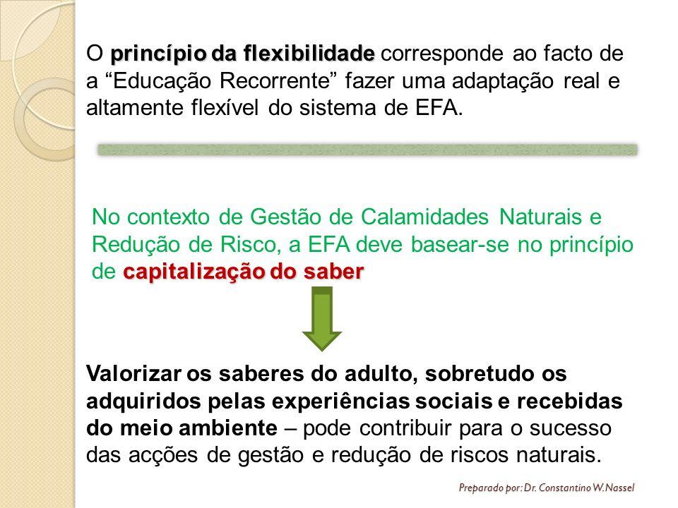 O princípio da flexibilidade corresponde ao facto de a Educação Recorrente fazer uma adaptação real e altamente flexível do sistema de EFA.