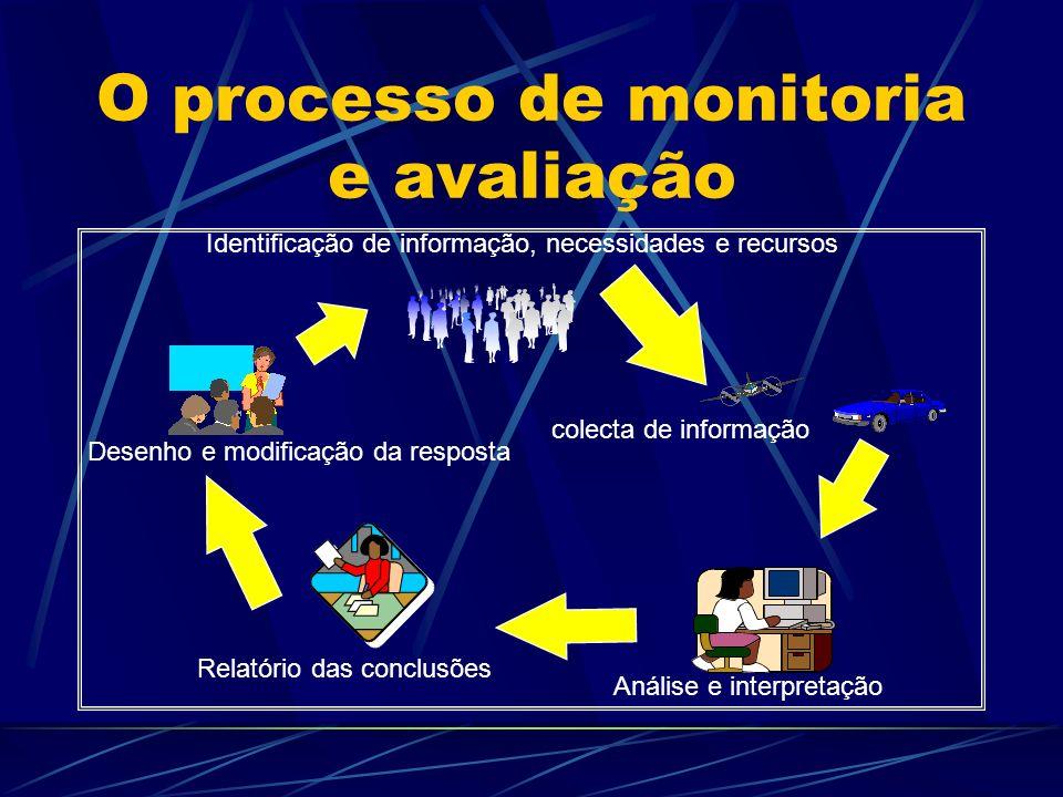 O processo de monitoria e avaliação