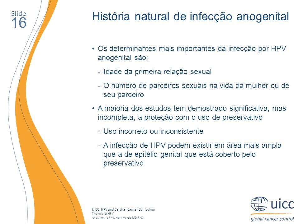 16 História natural de infecção anogenital Slide